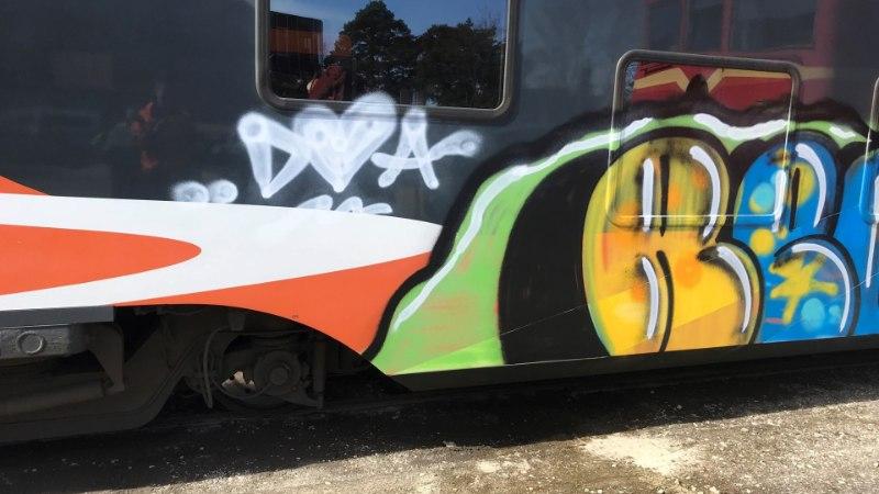 FOTOD | Politsei otsib Riisipere rongide sodijaid