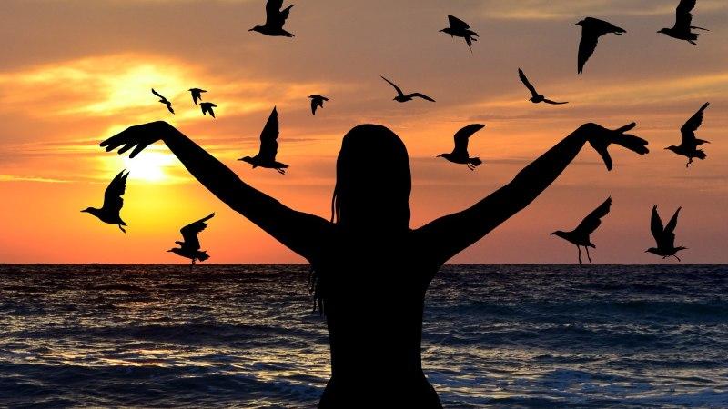 Tahad õnnelik olla? Mine linde vaatlema!