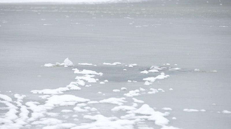 Lämmijärve ja Pihkva järve jääle minek on keelatud