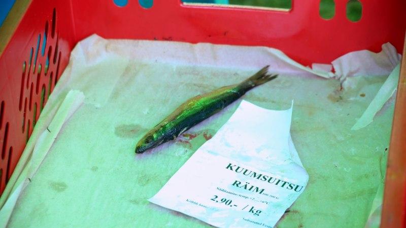 GALERII | Kalahuvilised tegid Leppneemes puhta töö