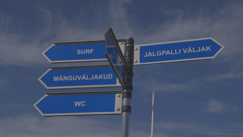 VIDEO | Roald Johannson uurib kirevat elu Stroomi rannas