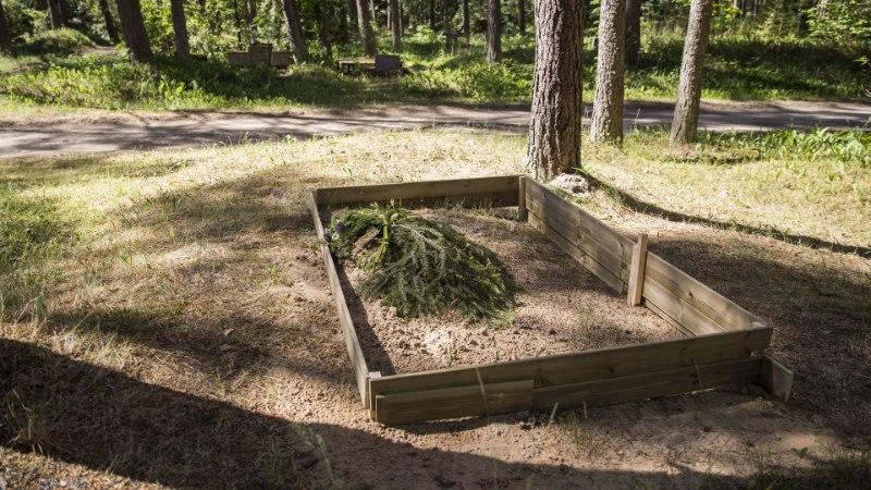"""Eduard Tubin: """"Rootsis muutub inimene pikapeale kiviks. Kuid kuhu minna?"""""""