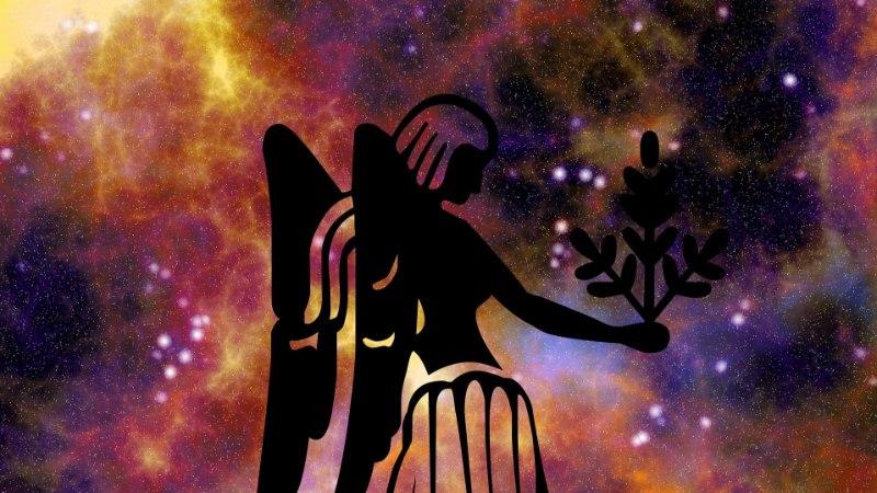 Neitsi suvine armuhoroskoop: valdavad vastakad tunded