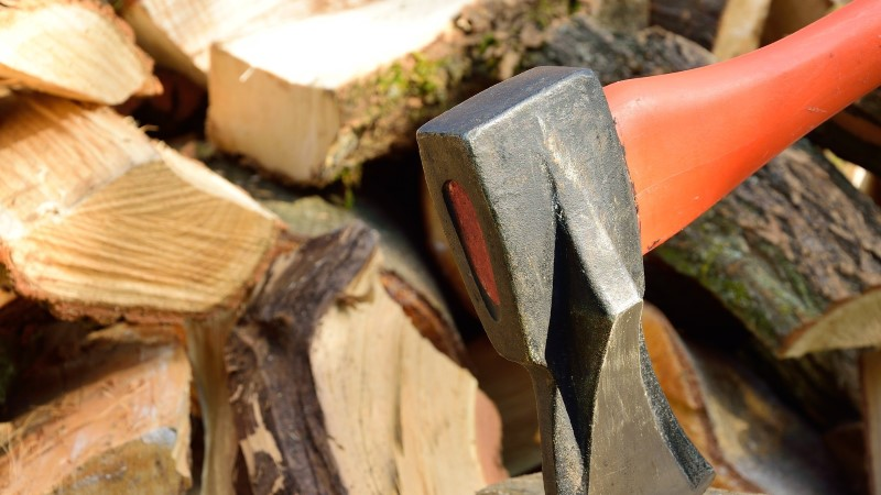 TEE ISE: kuidas saada talveks head küttepuud?