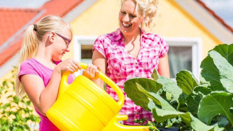AIAEKSPERDID ABISTAVAD: kuidas taimi õigesti kasta?