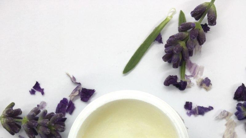 Lavendel – lõhnav ja violetne kaunitar