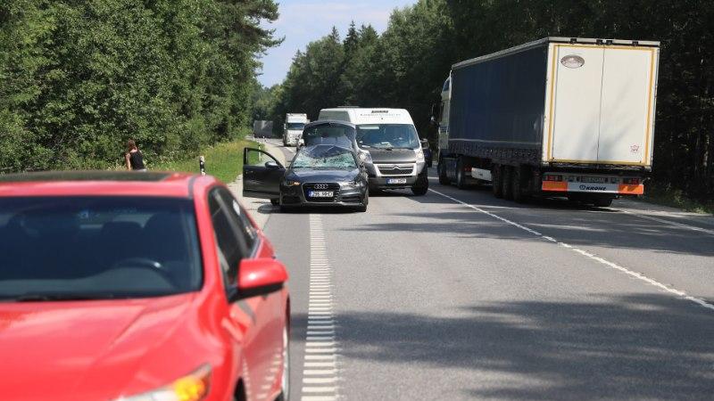 FOTOD | Tallinna ringteel sõitis auto põdrale otsa, väikelaps viidi haiglasse