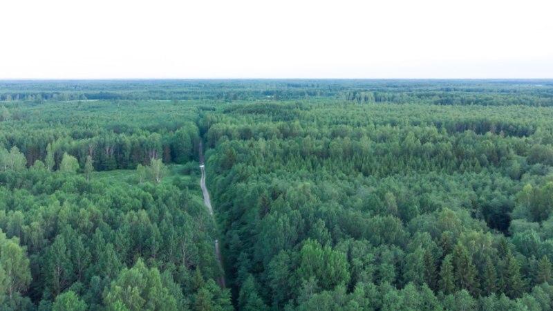 Kiri | Metsamure ei lõppenud tselluloositehase aruteluga
