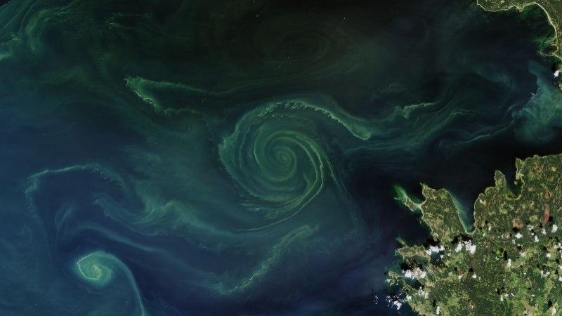 """VIDEO   Mereteadlane paljastas """"Ringvaates"""", et Maa ei ole lapik"""