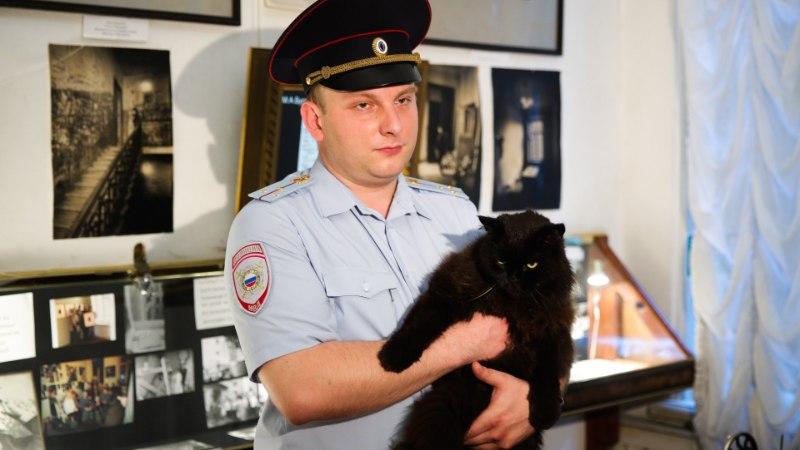 """""""Bulgakovi majamuuseumi töötaja on röövitud!"""" Mis juhtus kass Peemotiga?"""