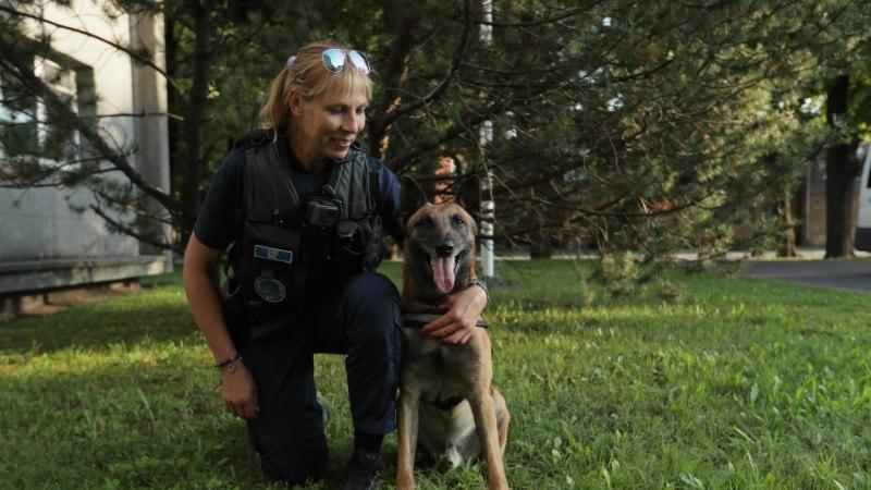 ÕL TV  | Vaata, kuidas patrullkoer Willy hoiab Pärnus korda