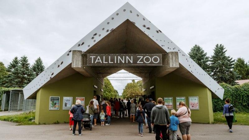 VIDEO JA GALERII | Tallinna loomaaed tähistab 79. sünnipäeva