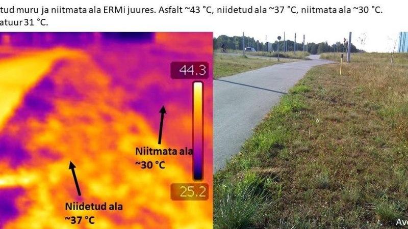 FOTOD | Mida näeb kuumas linnas termokaameraga?
