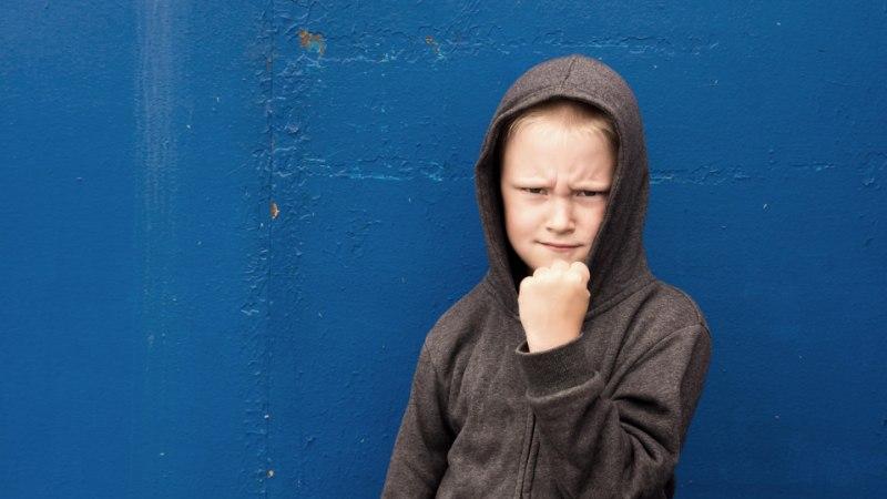 GEENID TEEVAD KURJATEGIJAKS? Kuidas vähendada kalduvust vägivaldsusele?