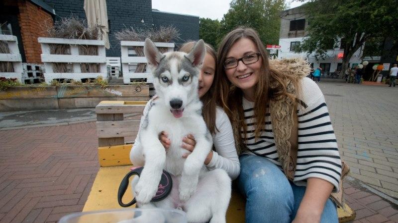 GALERII   Staaridest popimad! Eesti Instagrami-kuulsustest koerad kogunesid Kalamajas