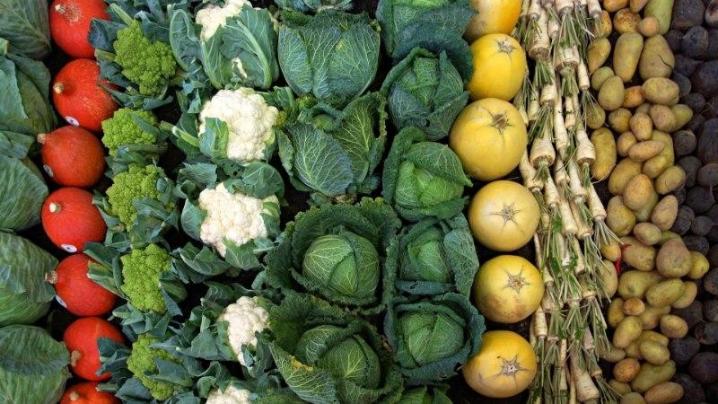 Ученые составили список самых полезных для здоровья продуктов