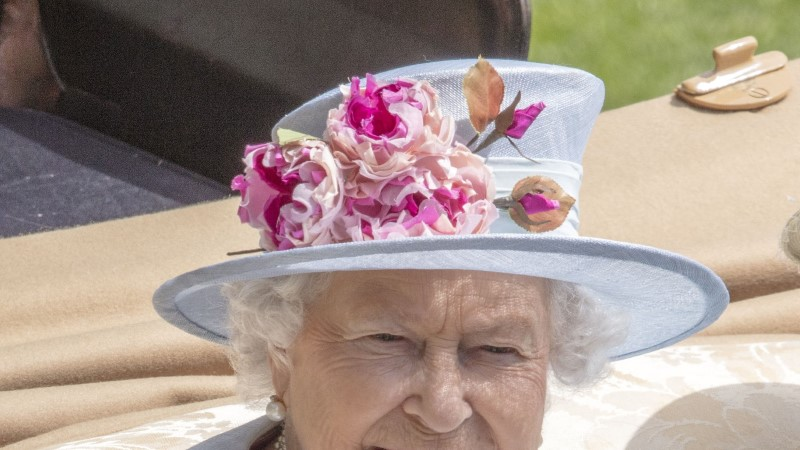 Kas teadsid? Kuninganna igapäevaelu kaaslasteks on roppkallid ridikülid, Facebook ja sai moosiga