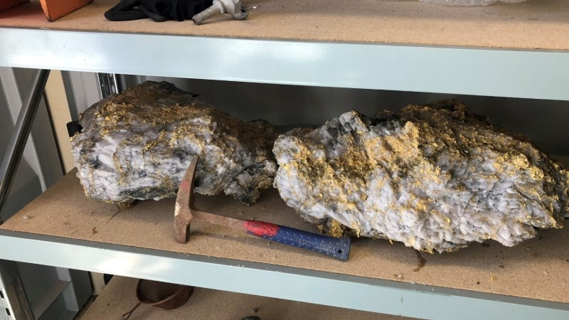 ÜLLATUS: kaevur leidis ligi 90 kilogrammi kaaluva kullakamaka