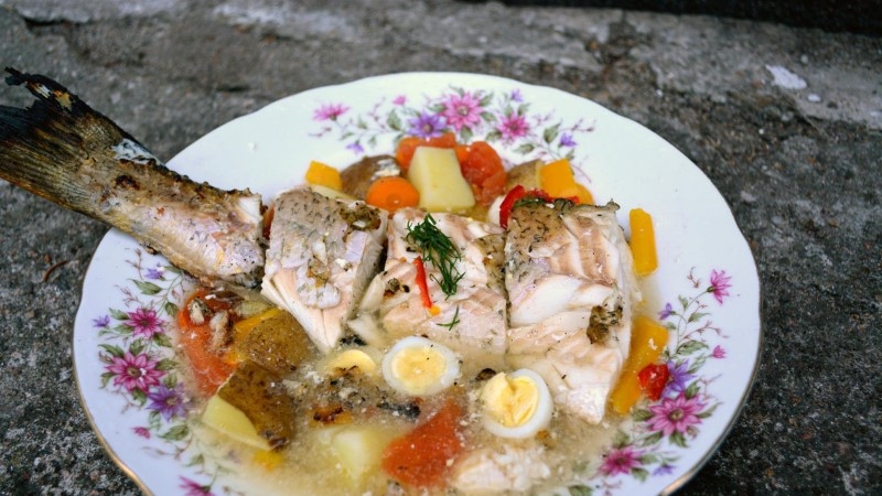 Doonau delta kalasupp ehk Kuidas Küprosel haugi küpsetama õpetati