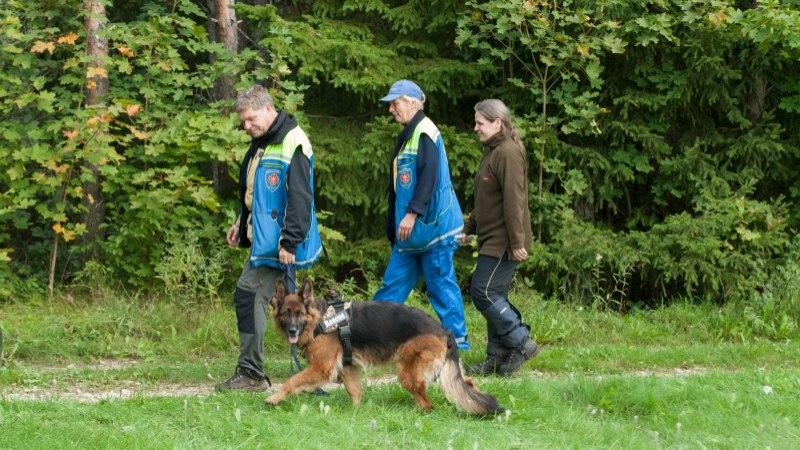 Piirivalvurid ja politseinikud leidsid Ida-Virumaalt metsast kaks kadunud meest