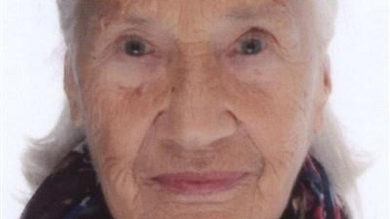 FOTO | Politsei otsib Harjumaal kadunud 87-aastast Illa-Koidulat