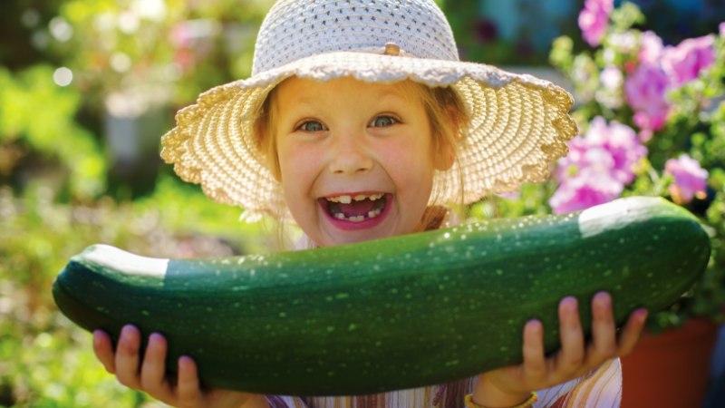 KAVALAD NIPID: kuidas valmistada köögivilju lapsele meeldival viisil
