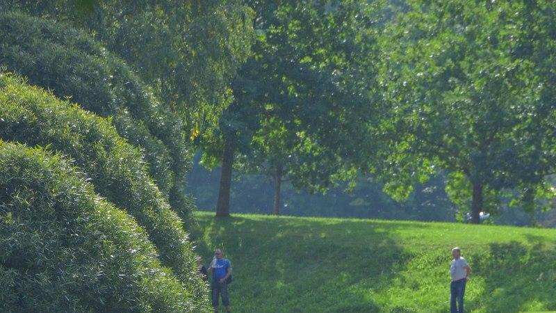 GALERII | Vaata, kas leiad end Paala järve jooksu piltidelt!