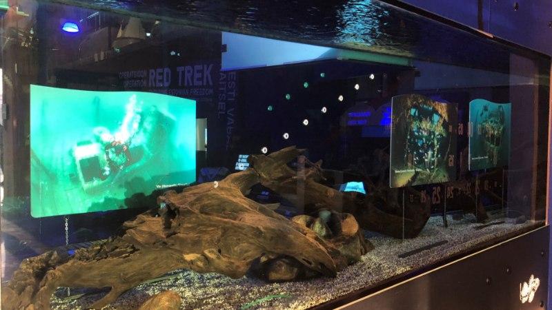 Allveearheoloogia fotod on Lennusadamas vee all