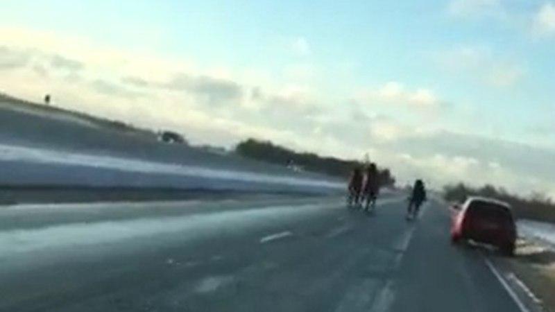 VIDEOD | Peterburi maanteel jooksis lahtiselt kari hobuseid