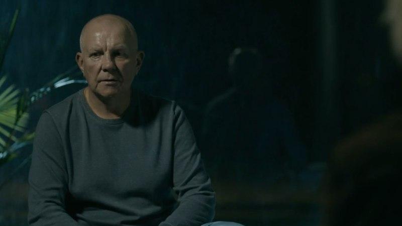 """Andrus Vaarik seriaalist """"Sild"""": kahju, et turunduse nimel pandi eestlasest peategelast mängima leedulanna"""