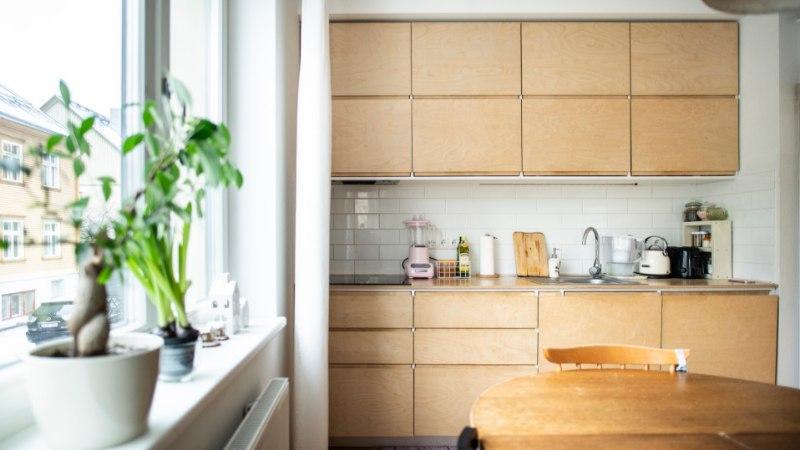 FOTOD   Noorte disainerite kodu, mis on täis värvi- ja detailimänge