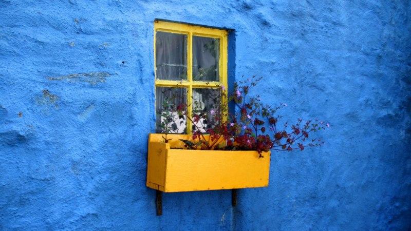 Täna on sinise värvi päev: see rahustab sind ning ohjeldab söömishimusid