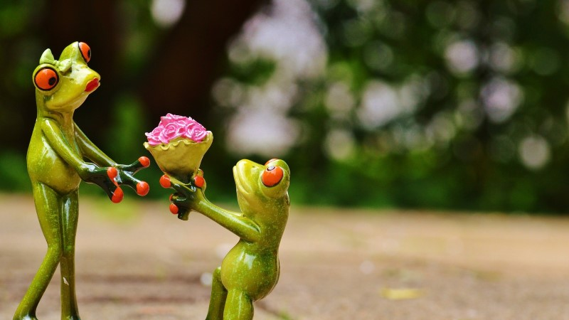 AVESTA 1. märts | Täna on hea päev leppimiseks ja andeks palumiseks