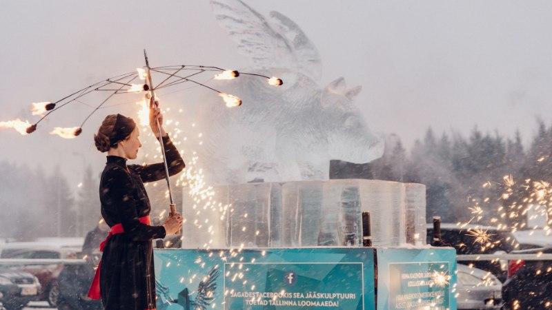 ФОТО: Возле торгового центра Rocca al Mare установили скульптуру летающего поросенка