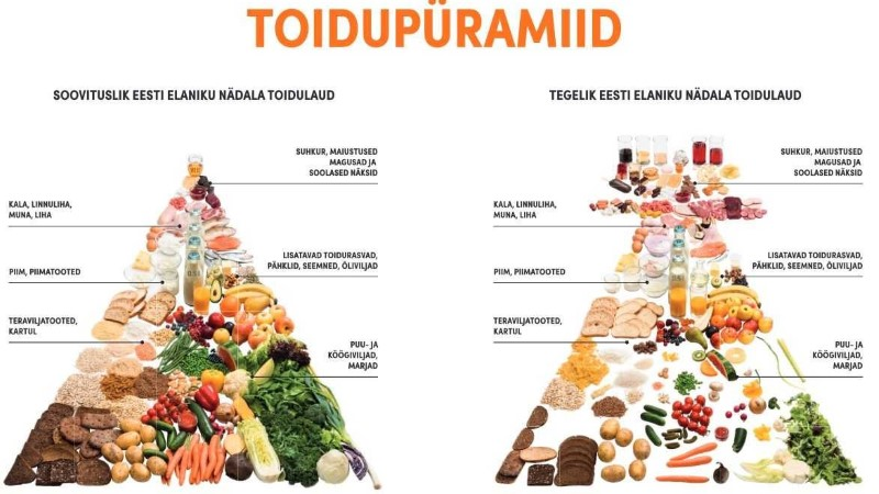 TOIDUPÜRAMIID ÕPETAB ÕIGESTI TOITUMA: söö vähem magusat ja lihatooteid!