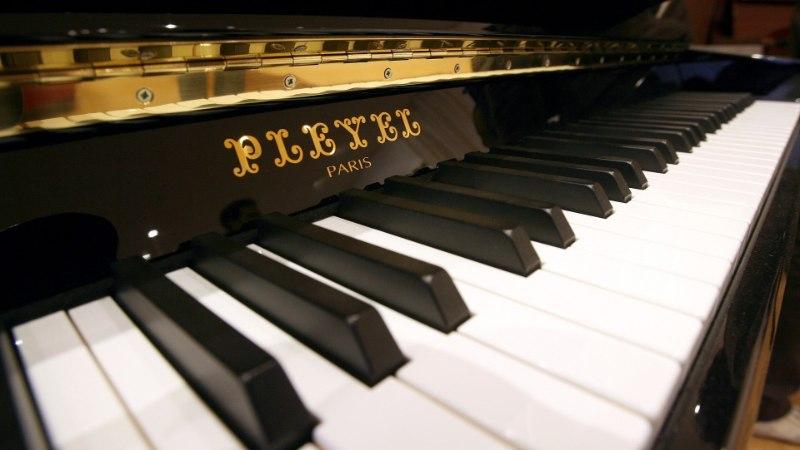Весна в Кадриорге начинается с бесплатного концерта классической музыки