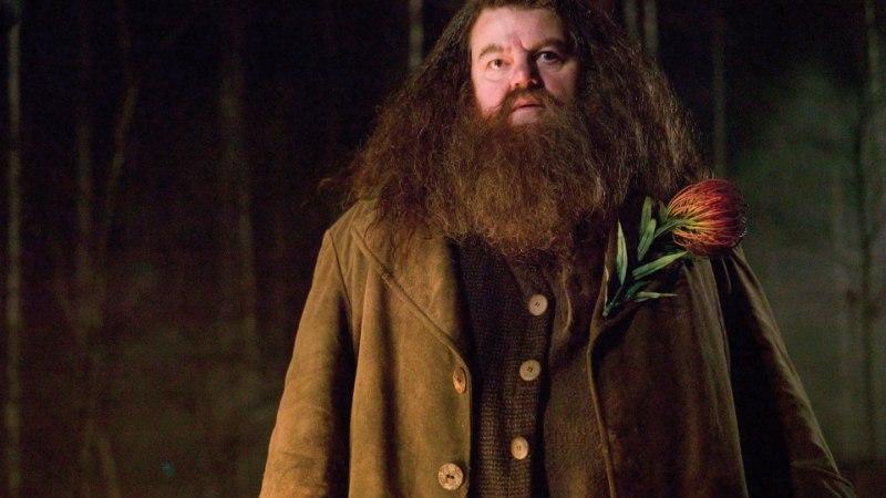 FOTO | Harry Potteri näitleja on raske haiguse tõttu aheldatud ratastooli