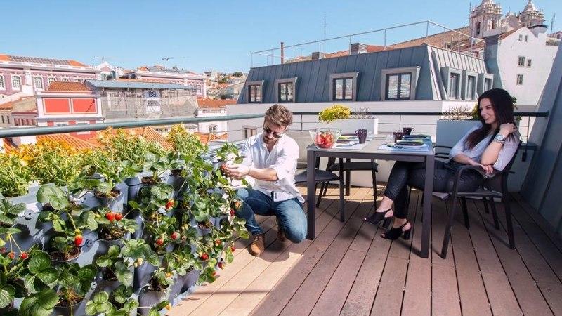 TÕUSEV TREND KA NOORTE SEAS: aiapidamine kui hea stressimaandaja!