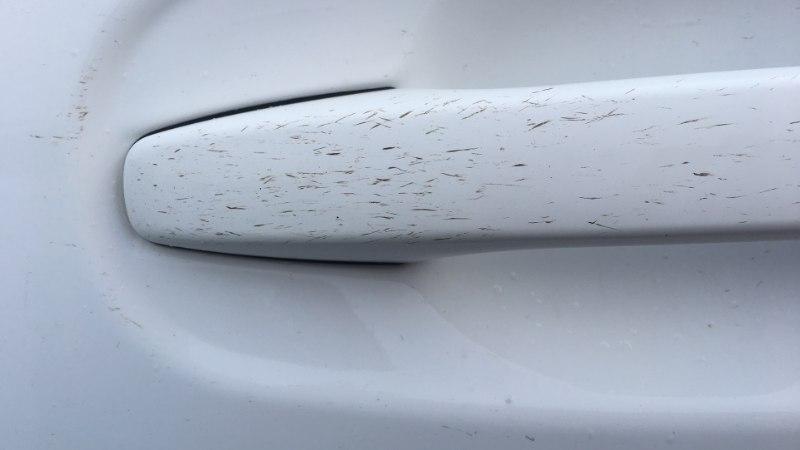 """Nördinud klient: """"Pesula määris mu valge auto ära!"""""""
