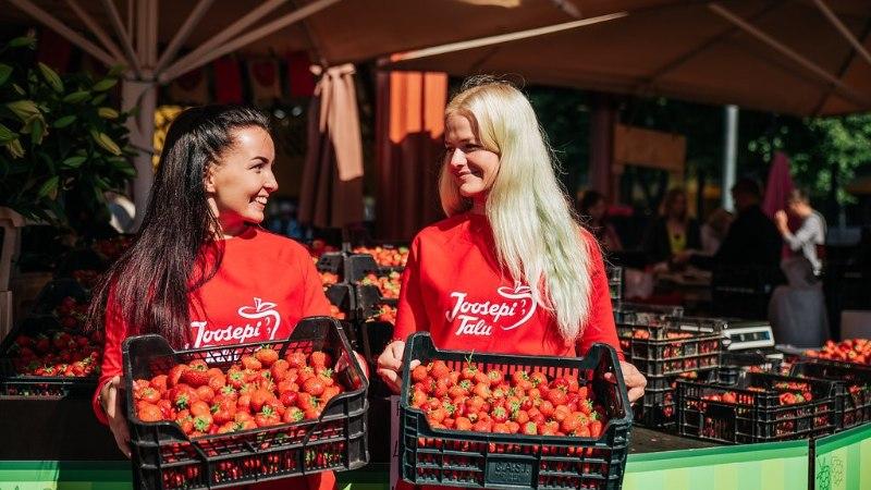 Joosepi talu maasikad on võitnud südameid