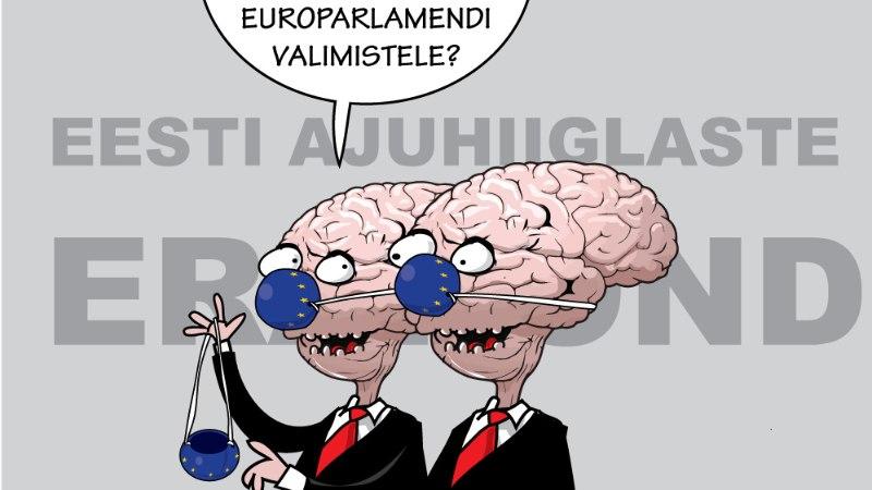 Toomas Alatalu | Eurovalimised kui vähemuse projekt