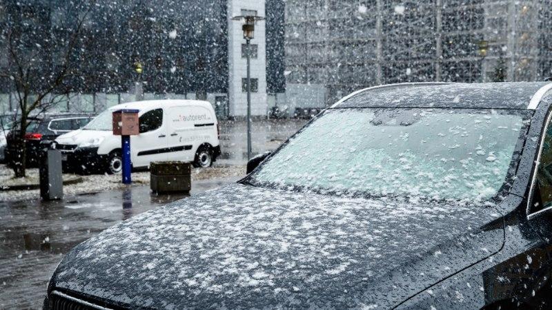 FOTOD JA VIDEO | TALV ON TAGASI? Tallinnas tuiskas lund