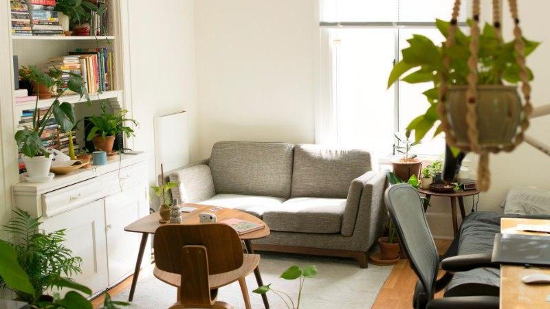 Aurupesur teeb su kodu imeväel puhtaks