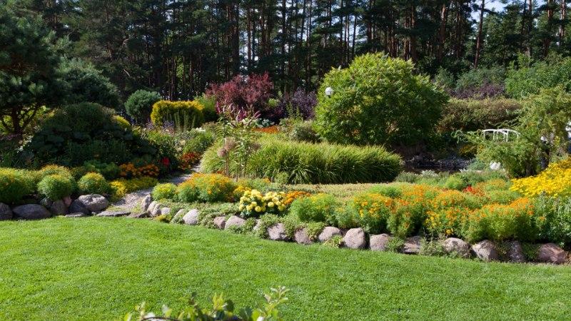 Julgelt värvirõõmus aed
