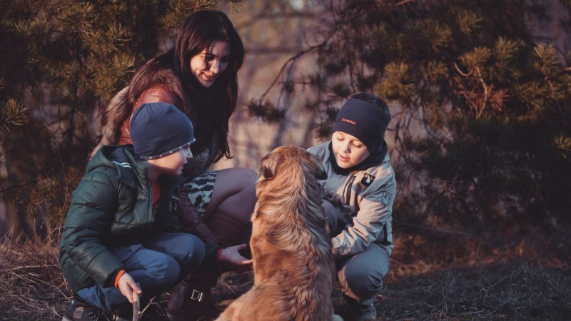 Kõik võivad abi saada teraapialoomadelt
