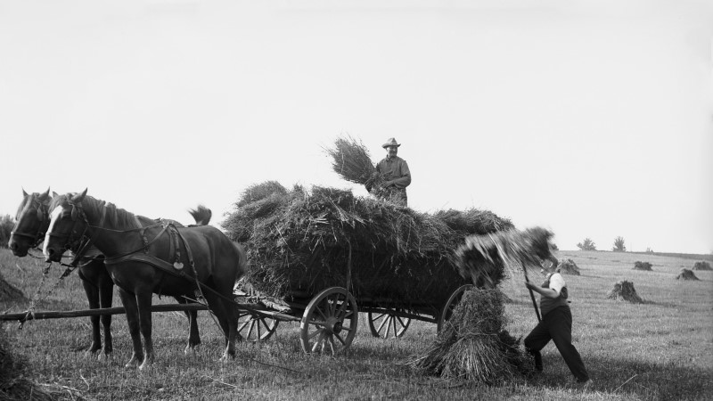 AJALOOLANE SELGITAB: kui hea oli elu tulevase maaeluministri idealiseeritud 1930ndatel?