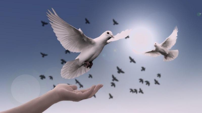 AVESTA 13. aprill | Hea aeg neile, kelle südametunnistus on puhas