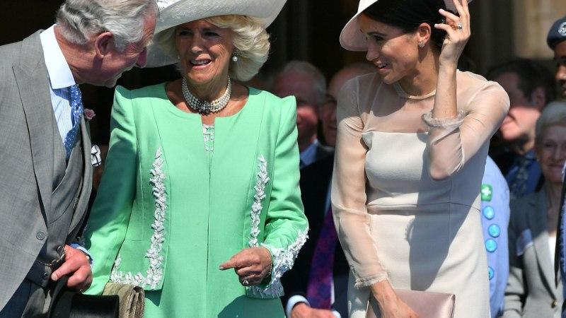 Kas hertsoginna Meghan on muutumas sama ebapopulaarseks kui Camilla Parker Bowles?