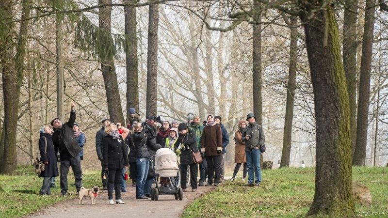 Tallinn on pühapäeval täis tasuta džässikontserte