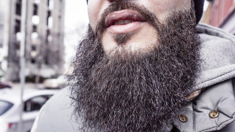 HALB UUDIS HIPSTERITELE: mehe habemes leidub rohkem baktereid kui koera karvades
